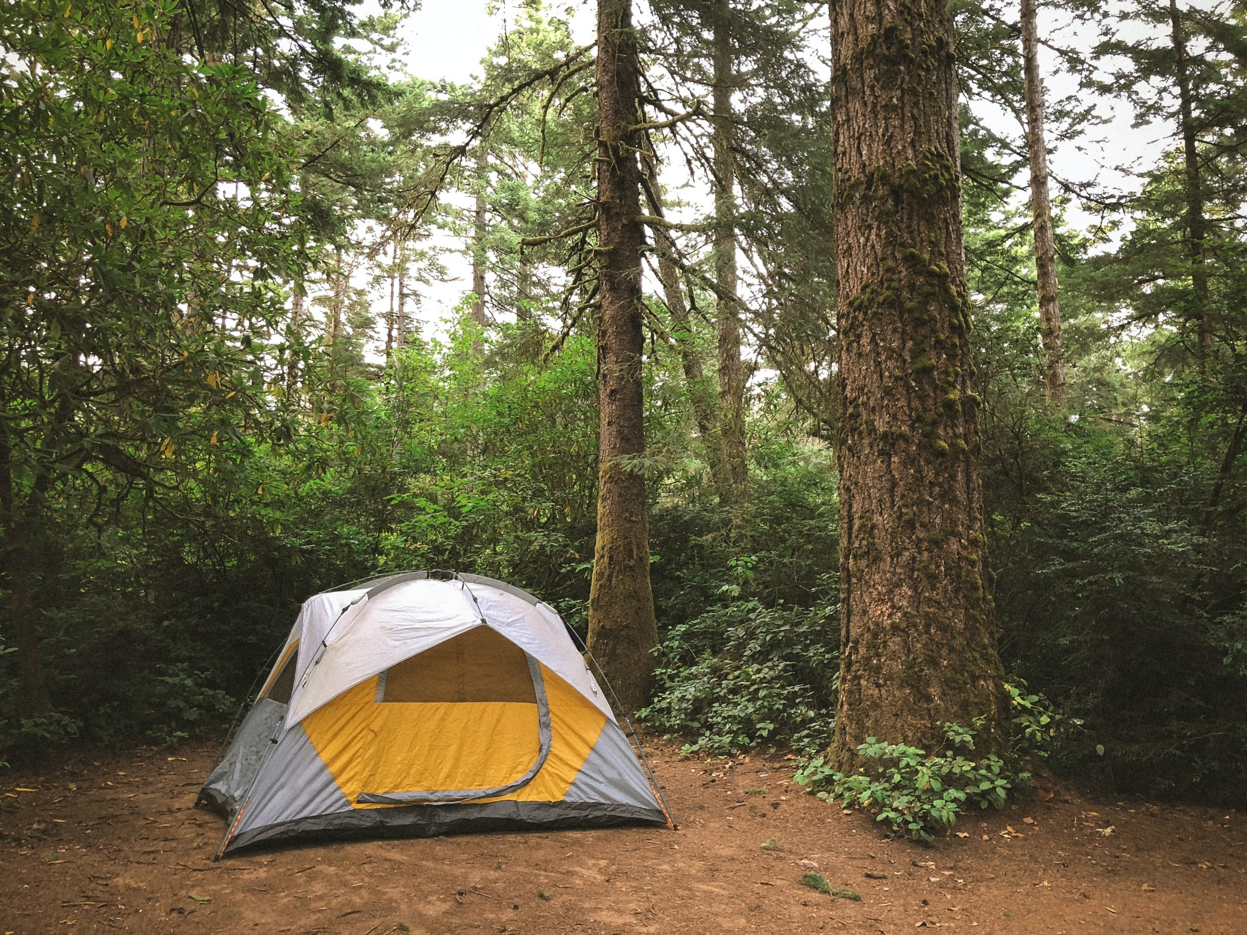 tent as shelter for wilderness survival