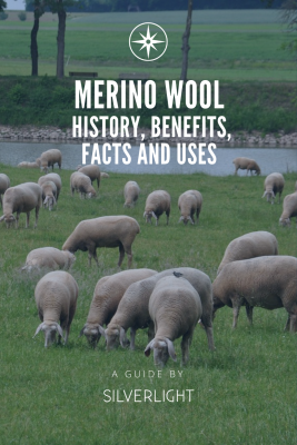 merino wool - history, benefits, facts and uses