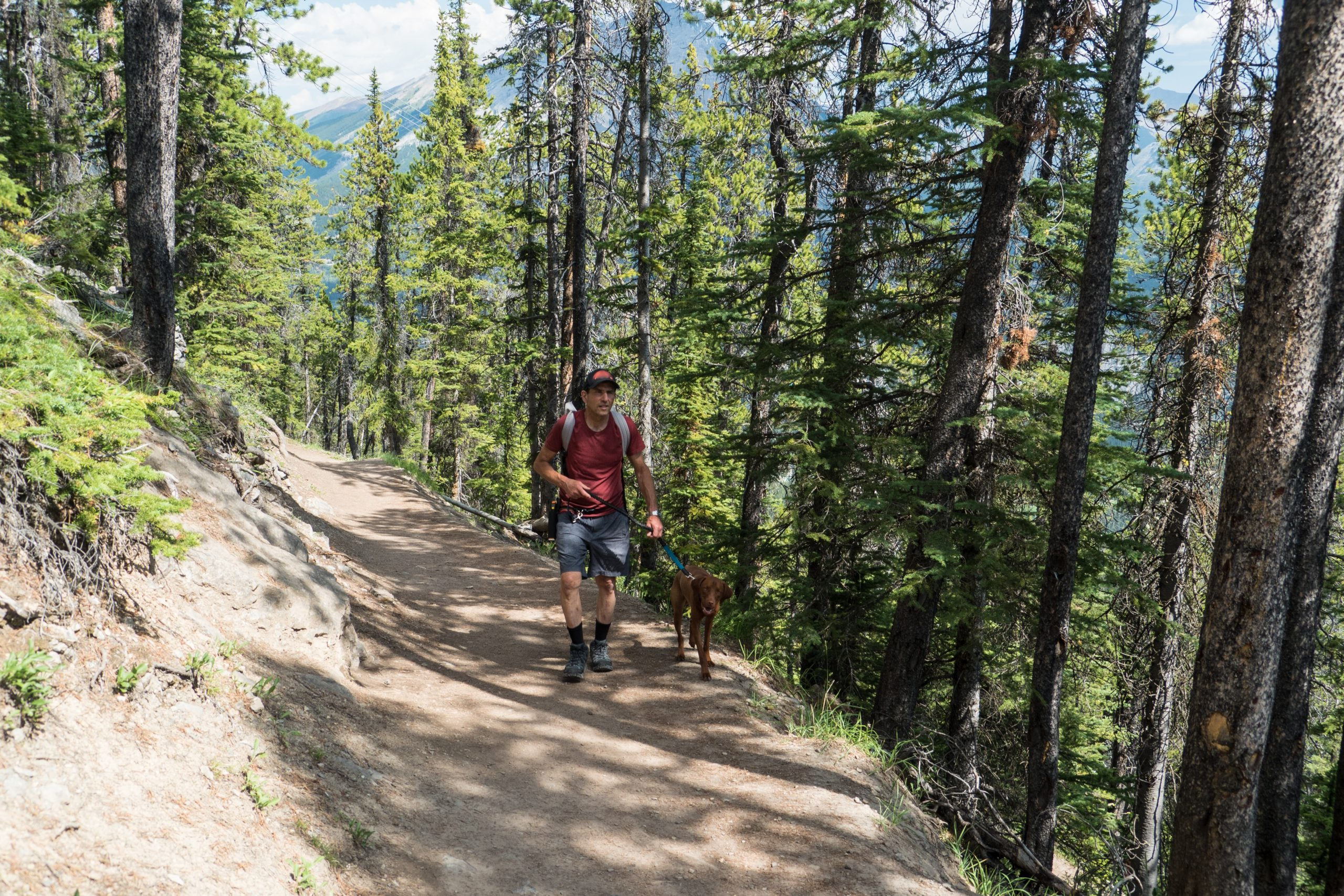 hiker with his dog on the trail